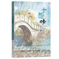 十图桥(少年寻根小说三部曲)