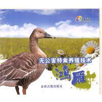 无公害特禽养殖技术-鸿雁DVD( 货号:78874875106)