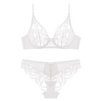 新款深V性感少女文胸套装 蕾丝提花透明内衣大码女士胸罩