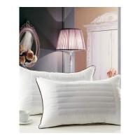 双面荞麦两用枕枕头枕芯单助睡眠 枕头芯一对48*74 带枕套