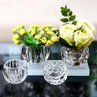 欧式铜钱草水培植物花盆绿萝花瓶透明客厅插花玻璃瓶容器