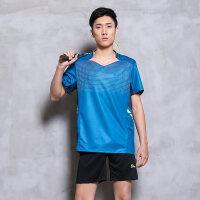 短袖羽毛球服套装男 速干修身夏韩版训练服羽毛球上衣 +361裤子