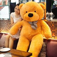送女友抱抱熊毛绒玩具大熊胖可爱布娃娃公仔
