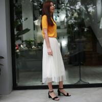 韩国蕾丝网纱半身裙女装百褶透视长裙欧根纱高腰沙滩裙中长款