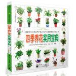 四季养花实用宝典(全彩)