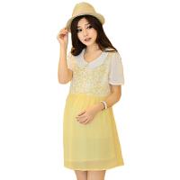 慈颜 孕妇夏装雪纺连衣裙娃娃领 孕妇装时尚上衣韩版孕妇裙子FF546