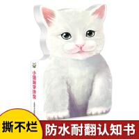 辞海版认知成长百科・萌宝认知启蒙系列・小猫咪学拼音