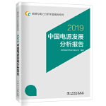 能源与电力分析年度报告系列 2019 中国电源发展分析报告