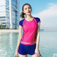 泳衣女分体保守遮肚显瘦运动款学生大码泳装温泉小胸聚拢泳衣