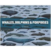 包邮Wales, Dolphins and Porpoises 鲸鱼,海豚和鼠海豚 观察指南