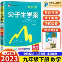尖子生学案九年级下册数学人教版