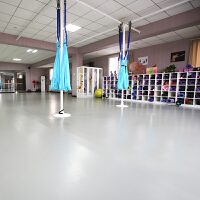 舞蹈地胶 舞蹈房舞蹈室教室 无划痕PVC运动塑胶地板
