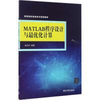 MATLAB程序设计与*化计算 臧文科 编著