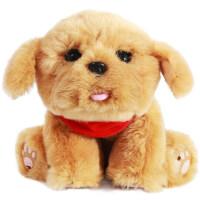 抱抱旺智能毛绒玩具 狗年吉祥物汪公仔机器人 六一儿童节礼物