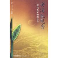安溪铁观音――一颗伟大植物的传奇【正版书籍,售后无忧】