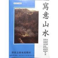 学习中国画-写意山水(3碟装)DVD( 货号:788306495)