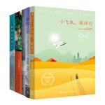 毕淑敏系列经典套装(小飞机,欧洲行+南极之南+破冰北极点+美洲小宇宙+非洲三万里)