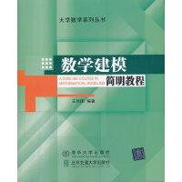 数学建模简明教程(大学数学系列丛书)