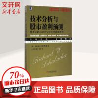 技术分析与股市盈利预测:技术分析科学之父沙巴克经典教程 (美)理查德 W.沙巴克(Richard W.Schaback