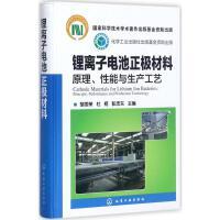 锂离子电池正极材料:原理、性能与生产工艺 胡国荣,杜柯,彭忠东 主编