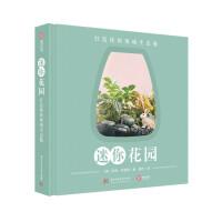 迷你花园:打造你的玻璃生态瓶 园艺 花卉 DIY 创意微景观 生态瓶 创意