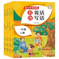 语文专项训练一年级上册6册 语文专项训练阅读理解每日一练小学拼音拼读训练看图写话 一年级课外阅读书课堂同步训练练习册