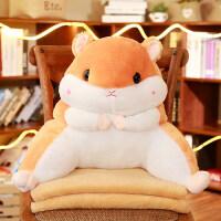 仓鼠抱枕被子两用靠背护腰靠垫靠枕办公室腰垫毯子空调被枕头椅子