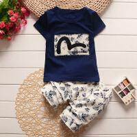 新款童装夏装中小童儿童短袖T恤男女童运动套装宝宝