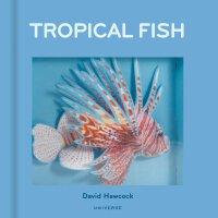英文原版 热带鱼 立体书 Tropical Fish: Pop-Up by David Hawcock