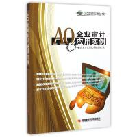 AO企业审计应用实例 AO应用实例丛书编写组