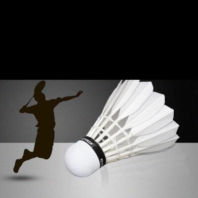 耐打羽毛球12只装6只装室内室外练习比赛训练羽毛球 发货周期:一般在付款后2-90天左右发货,具体发货时间请以与客服协商的时间为准
