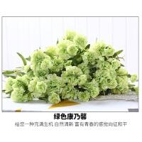 仿真花套装康乃馨花艺花卉花束绢花假花装饰花客厅花瓶摆设摆件
