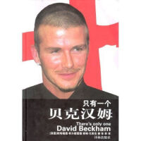 只有一个贝克汉姆9787806575314 译林出版社