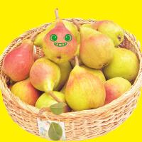 【山东特产】烟台太婆梨啤梨莱阳梨鸭梨软糯多汁软梨 新鲜水果5斤包邮