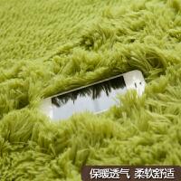丝毛地毯客厅长方形可水洗沙发茶几地毯卧室房间满铺地毯床边飘窗
