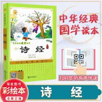 诗经 青少年推荐阅读中华经典国学读本 彩绘版