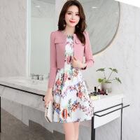 连衣裙春季新款女装18春装冬装潮韩版时尚百搭套装时髦两件套