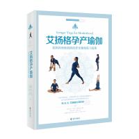 艾扬格孕产瑜伽 海南出版社