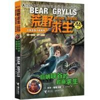 荒野求生少年生存小说拓展版19:巨蚺峡谷的岩崩求生