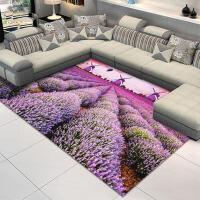 现代时尚茶几地毯家用卧室床边垫地毯客厅简约地毯门厅地毯