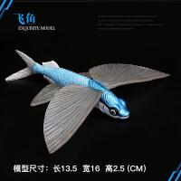 海洋生物海洋海底动物玩具鱼模型