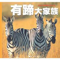 【旧书二手书9成新】 动物王国探险系列丛书�D�D有蹄大家族 9787501554423 知识出版社