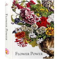 【英文版】Flower Power艺术之花 艺术品中的花卉 绘画 陶艺 壁画 刺绣 艺术书籍