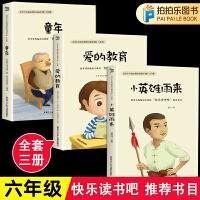 童年+爱的教育+小英雄雨来六年级课外阅读推荐书籍快乐读书吧六年级上册