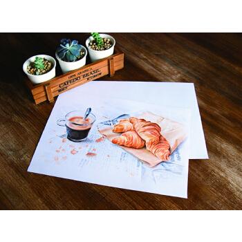 《飞乐鸟彩铅专用纸》纯木浆、中细纹、易上铅、耐擦拭,中性无酸可长期保存
