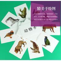 宝宝杜曼早教闪卡多乐智动物卡片幼儿童右脑记忆开发百科卡全套装
