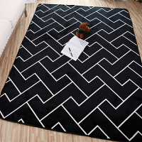 北欧风格网红大地毯满铺客厅茶几地垫可爱卧室房间床边垫独特定制j