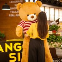 毛绒玩具布娃娃抱枕生日礼物送女友抱抱熊玩偶女熊大号熊公仔