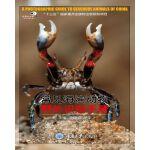 常见海滨动物野外识别手册