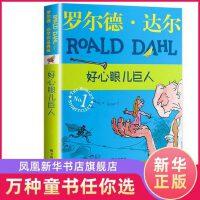 好心眼儿巨人 罗尔德达尔作品典藏 同名电影《圆梦巨人》儿童读物